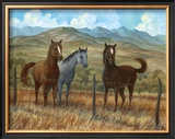 Appaloosa I Print by Ron Jenkins