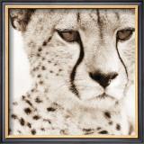 Cheetah Pattern Print by Frank & Susann Parker