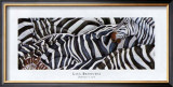 Zebras&#39;s Sea Print by LISA BENOUDIZ