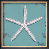Distressed Seashells: Starfish II Prints by Melody Hogan