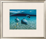 The Chase, Maui Dolphins Print by Mark Mackay