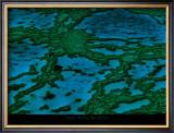Grande Barriere de Corail Posters by Yann Arthus-Bertrand