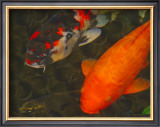 Green Rock Japanese Koi II Framed Giclee Print by  erichan