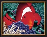 Clown Fish Posters by Mark Mackay