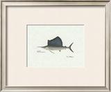 Sailfish Art by Ron Pittard