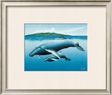 New Birth Framed Giclee Print by Mark Mackay