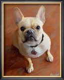 Sophie French Bulldog Prints by Robert Mcclintock