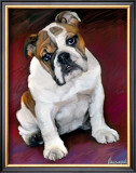 Bulldog Baby Prints by Robert Mcclintock