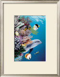 Dolphin's Reef Print by Mark Mackay