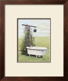 Bird Bath Poster by Kathleen Green