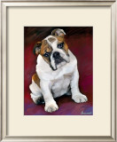 Bulldog Baby Posters by Robert Mcclintock