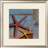 Sanibel Starfish Print by Paul Brent