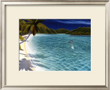 Trunk Bay Prints by Dan Mackin