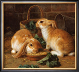 Bunnies' Meal I Posters by Alfred Barber