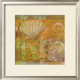 Seashell Collage Prints by Pierre Fortin