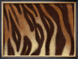 Tiger I Prints by Norman Wyatt Jr.