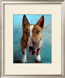Spike Bull Terrier Prints by Robert Mcclintock