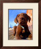Lab Puppy Posters by Robert Mcclintock