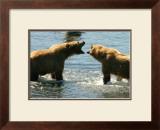 Kodiak Bear Alaska Conversation Framed Giclee Print by Charles Glover