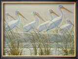 Bounty of the Wetlands (detail) Posters by Robert Bateman