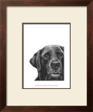 Millie the Black Lab Prints by Beth Thomas