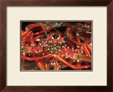 Hello Lobster Print by Charles Glover