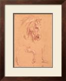 Horse Head Print by Pier Leone Ghezzi