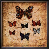 Papillons II Prints by Claudette Beauvais