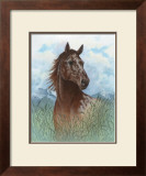 Appaloosa Portrait Poster by Ron Jenkins