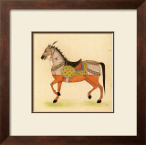Horse from India I Prints