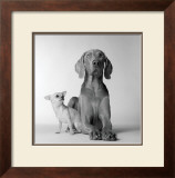 Max and Roxie Print by Amanda Jones
