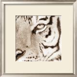 Tiger Pattern Prints by Frank & Susann Parker