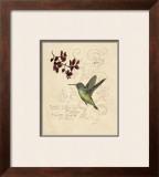 Filigree Hummingbird Posters by Chad Barrett