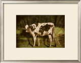 Global Cow Prints by Barry Downard