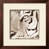 Tiger Pattern Posters by Frank & Susann Parker
