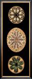 Kaleidoscope Anemone II Prints