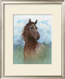 Appaloosa Portrait Art by Ron Jenkins