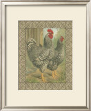 Roosters II Posters by  Cassell's Poultry Book