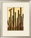 Mojave Print by Robert Littleford