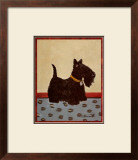 Scottish Terrier Poster by Lanny Barnard