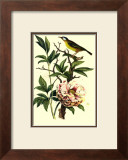Bird in Nature III Prints by E. Guerin