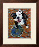 Happy Staffie Posters by Robert Mcclintock