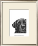 Millie the Black Lab Posters by Beth Thomas