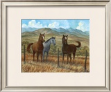 Appaloosa I Prints by Ron Jenkins