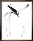 Perched Bird Poster by Aurore De La Morinerie