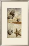Galets Bleus et Etoile de Mer Prints by Véronique Didier-Laurent