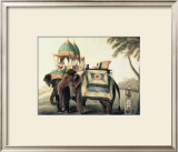 Indian Elephants I Posters
