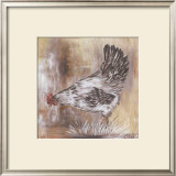 Poule Blanche Prints by  Clauva
