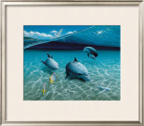 The Chase, Maui Dolphins Art by Mark Mackay