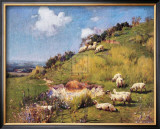 Sheep on a Hillside Prints by Sir William Llewellyn